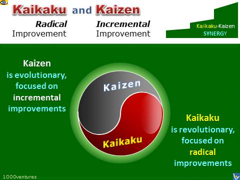 KAIZEN and KAIKAKU - Yin and Yang - Continuous Improvement Synergy