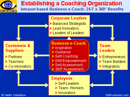 Establishing a Coaching Organization: Key Areas and Benefits