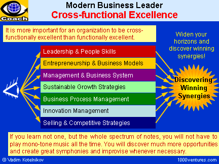 Synergy - Building Cross-functional Excellence to Discover Synergies