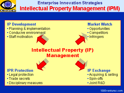 IPR: Intellectual Property Management (IPM)