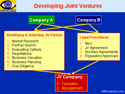 Developing Joint Ventures