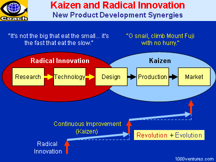 Kaizen and Radical Innovation