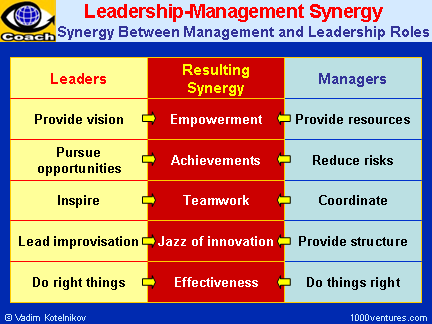 Leadership-Management Synergy