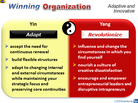Winning Organization - Yin and Yang strategies