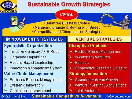 Sustainable Growth Strategies