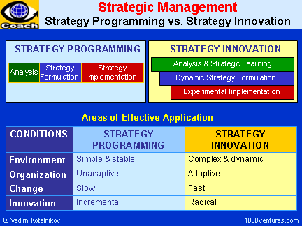 Strategic Management: Strategy Innovation vs. Strategy Programming
